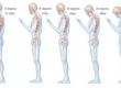 Ваші хребет і м'язи будуть вдячні, якщо ви будете слідувати цим 4 порадам...